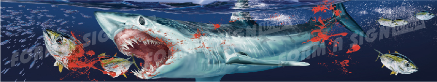 mako shark boat wrap design