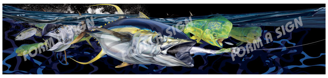 illustration of mahi mahi and yellowfin tuna
